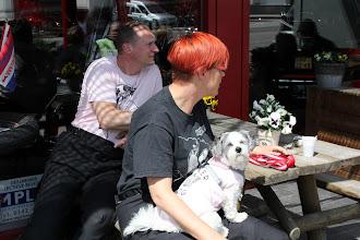 Photo: ook de hondjes waren weer van de partij