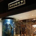 famous bar and restaurant goughs in hong kong in Hong Kong, , Hong Kong SAR