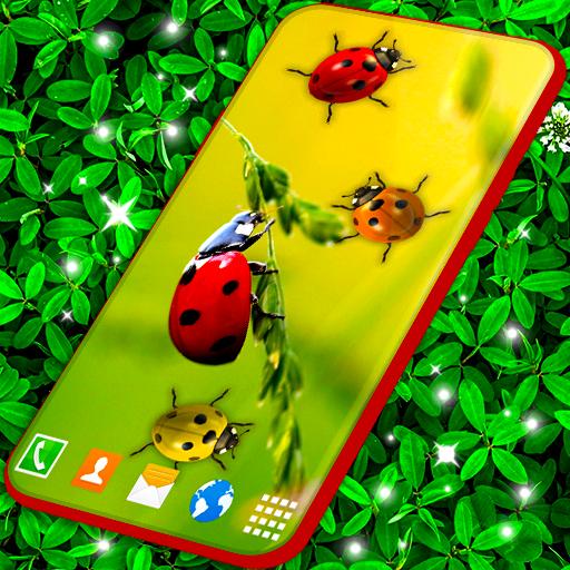 Ladybug Live Wallpaper Cute Ladybird Wallpapers Aplikacije Na