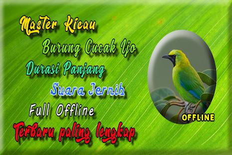 Suara Burung Cucak Ijo Betina Gacor MP3 - náhled
