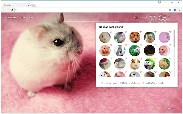 Hamster Wallpapers HD Custom Hamsters New Tab