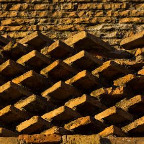 Bricks by D L - Abstract Patterns ( colosseum, rome, shadow, brick, bricks, italy )