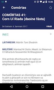 An tOireachtas - náhled