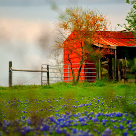 Red, withe and Blue by Rhonda Kay - Buildings & Architecture Other Exteriors (  )