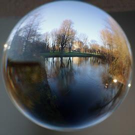 Bol Fotografie. by Anja Kroes - Abstract Macro