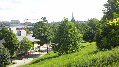 Photo: Stadtsilouhette vom Buschey-Hang aus.
