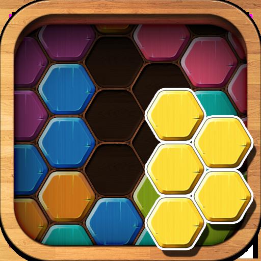 Wood Block Puzzle Hexa