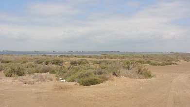 Photo: Out on the sand bar road linking the salinas de la Rapita with the main south road through the Delta del Ebre