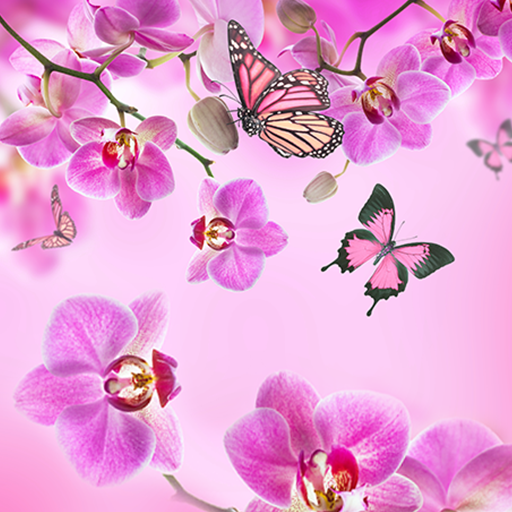 Pink Flowers Live Wallpaper - Apps on