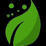 Doctor Verde