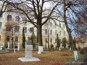 """Photo: Bustul lui Teodor Murasanu si """"Stejarul Unirii"""" - (2009.01.28)"""