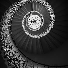 spiral by Balan Gratian - Black & White Buildings & Architecture ( london, london queen house, queen, architecture, architectural spiral stairs )