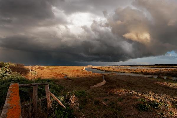 Prima del temporale di manrico