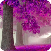 Purple Trees Live Wallpaper