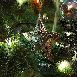 by Amanda Saxton-Jenson - Public Holidays Christmas (  )