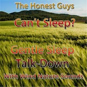 Can't Sleep? Gentle Sleep Talk-Down With Wind Nature Sounds