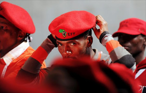 Members of the EFF. File picture