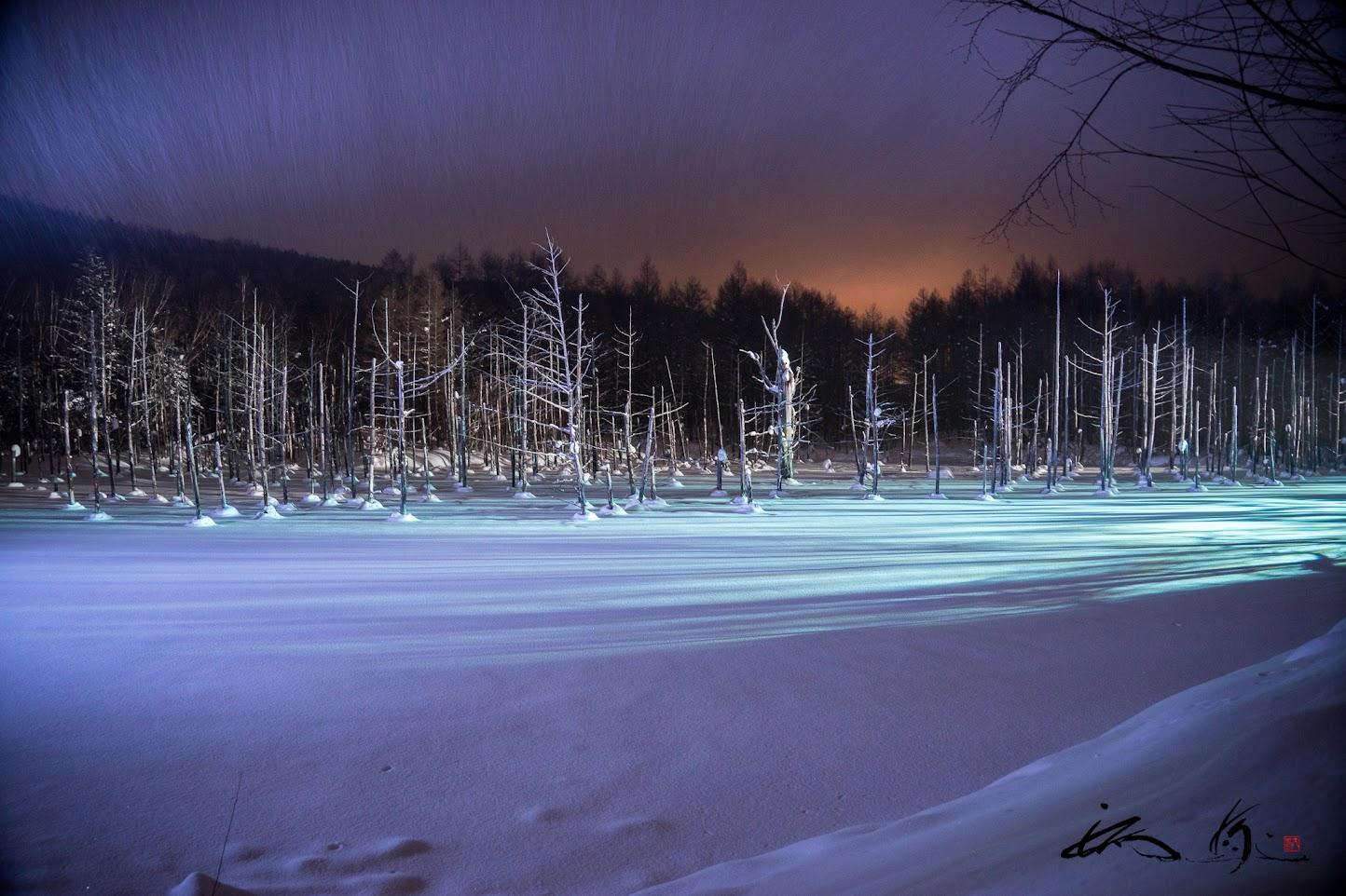 白金青い池ライトアップ
