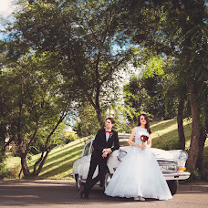 Wedding photographer Olga Volovyashko (Voloviashko). Photo of 01.10.2014