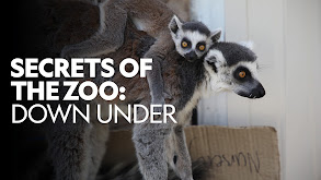 Secrets of the Zoo: Down Under thumbnail