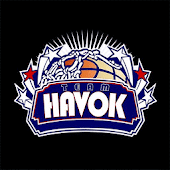 Team Havok