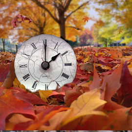 Fall Back by Doreen Rutherford - Artistic Objects Technology Objects
