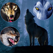 Wolf Themes