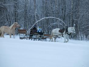 """Photo: """"Зима! Крестьянин, торжествуя, На дровнях обновляет путь; Его лошадка, снег почуя, Плетется рысью как-нибудь"""".  А.С. Пушкин"""