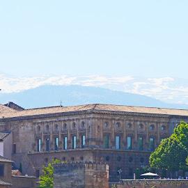 La Generalitat Building by Joatan Berbel - Buildings & Architecture Other Exteriors ( spain, granada, historic district, andalucia, history, building, colorful, architecture )