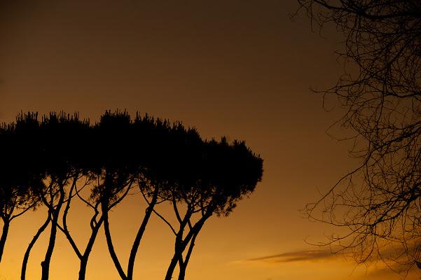 Tramonto sull'Appia  antica di Black