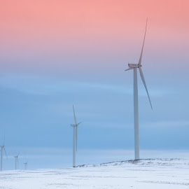 simplicity eco by Lupu Radu - Landscapes Prairies, Meadows & Fields ( orange, lost, windpower, dobrogea, frozen, fire, deserted, field, sky, red, winter, cold, january, sunset, snow, empty, ecology, ruins, eco )