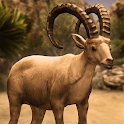 Ultimate Ibex Simulator icon
