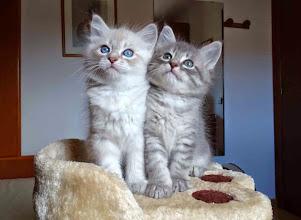 Photo: Sían y Sasha