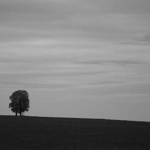 Moravska-DVG_2801.jpg