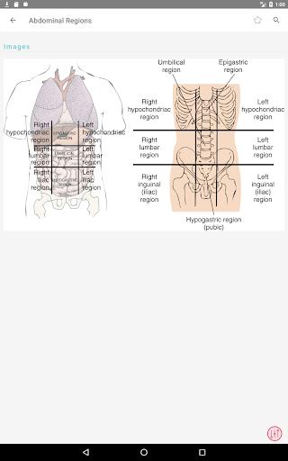 Taber's Cyclopedic (Medical) Dictionary 23rd Ed. 3.5.14 Screenshots 10