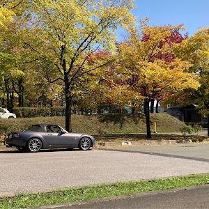 ロードスター NCEC NC1 6MTのカスタム事例画像 Higumaさんの2020年10月05日16:36の投稿