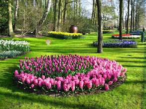 Photo: #019-Le parc floral du Keukenhof.