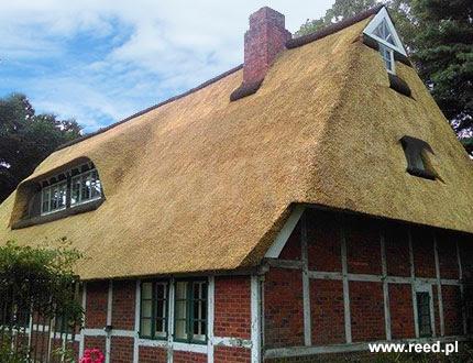 Dach z trzciny na budynku z czerwonego muru pruskiego