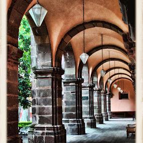 bellas artes, san miguel de allende, mexico by Jim Knoch - Buildings & Architecture Architectural Detail