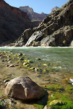 Photo: Crystal Rapids, Colorado River, Grand Canyon, Arizona USA