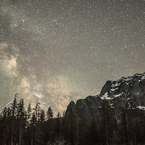 Star struck. by Dale Slater - Landscapes Starscapes ( mountains, stars, woods, milky way, nightscape )