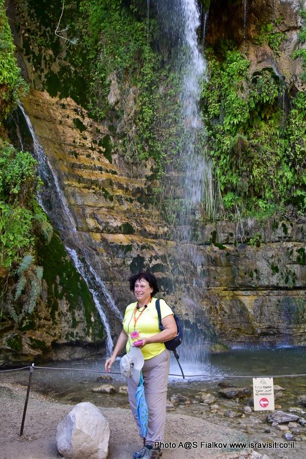 Гид в Израиле Светлана Фиалкова на экскурсии в заповеднике Эйн-Геди.