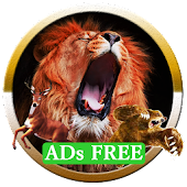Lion Hunt - Ads Free