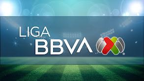 Fútbol Mexicano Primera División thumbnail