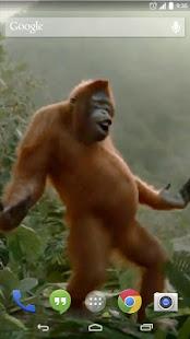 Wild Dance Crazy Monkey LWP 1