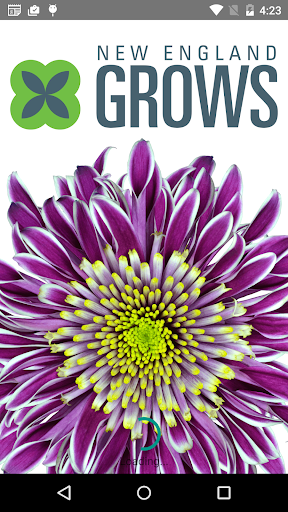 NEW ENGLAND GROWS