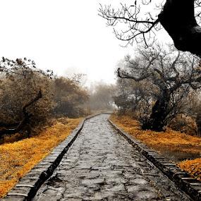 by Arun Acharya - Landscapes Travel