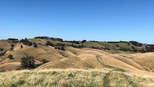 220 Hectares Mixed Farming Sharefarm South Gippsland Victoria