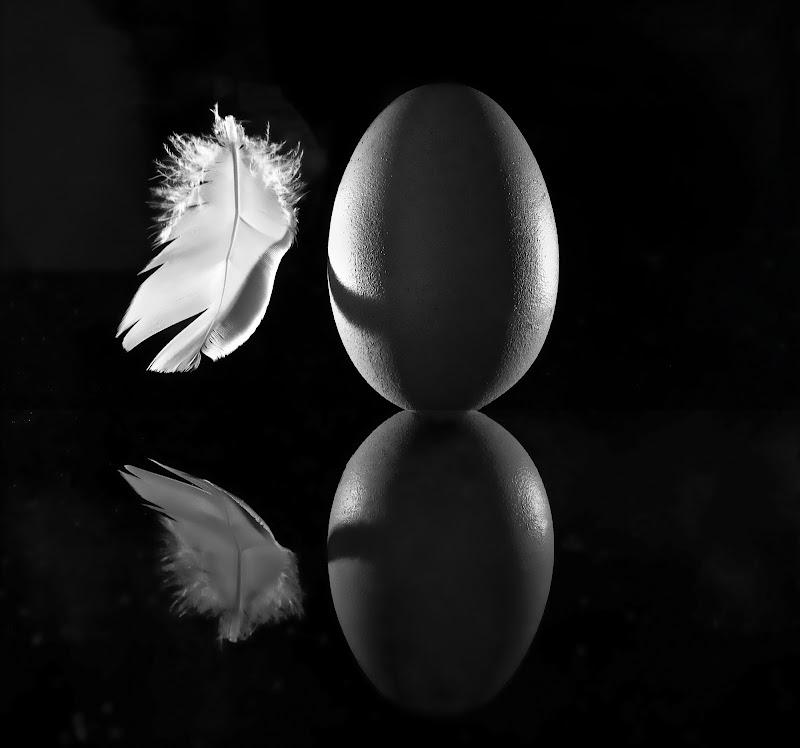 leggerezza e fragilità di angelo27