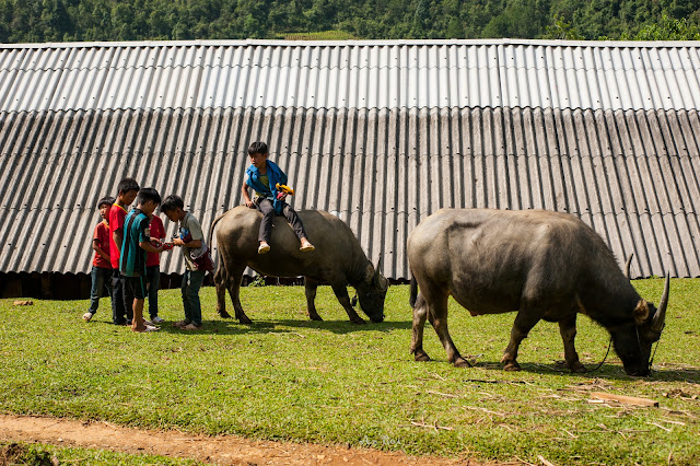 Visit Hmong village in Mu Cang Chai